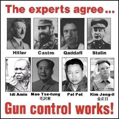 experts gun control
