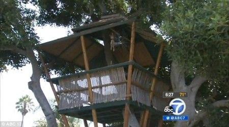 treehouse erickson