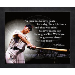 ted williams greatest