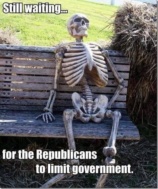 waiting-to-limit-govt